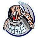 125px-Straubing_tigers_logo